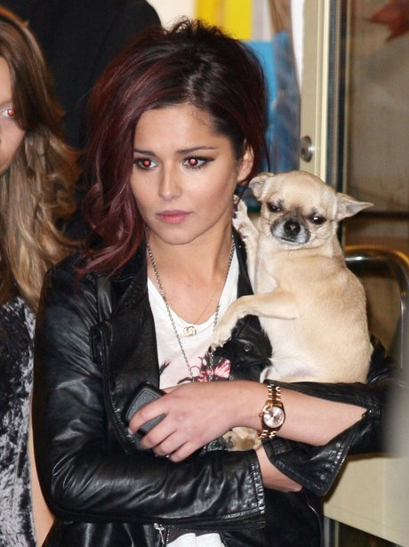 Cheryl Cole and Dog