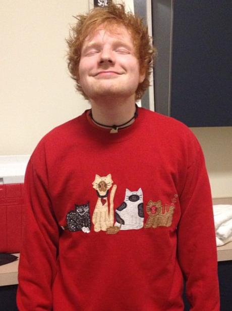 Ed Sheeran wearing a cat jumper