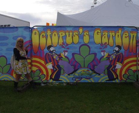 What can you get up to at the Festival?