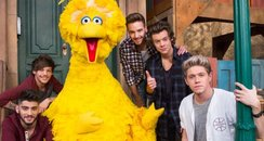 One Direction Sesame Street