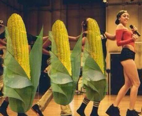 Miley Cyrus Corn Dancers