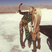 Image 6: GiGi Hadid Donatella Versace Instagram