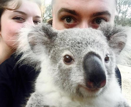 Sam Smith Koala Bear Selfie Instagram