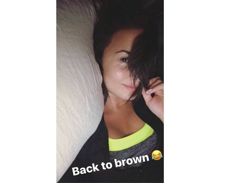Demi Lovato goes back to brunette